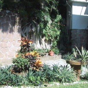 detalle vista jardín